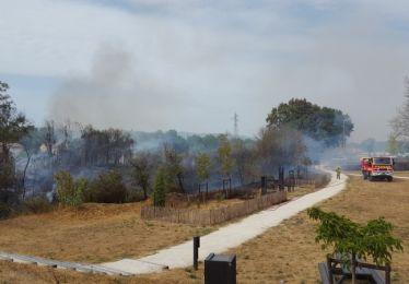 Un feu sur les bords de l'Eze à Pertuis rapidement maîtrisé
