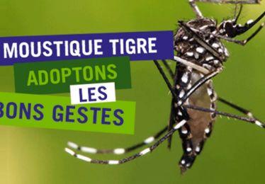 L'été arrive, quelques mesures de prévention pour éloigner les moustiques