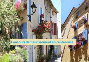 Concours : et si on fleurissait nos maisons et nos balcons du centre-ville ?
