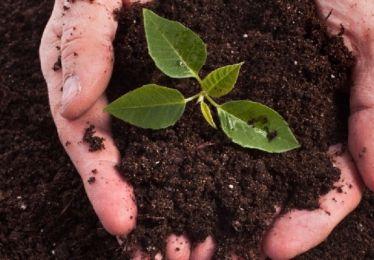 Semaine nationale du compostage