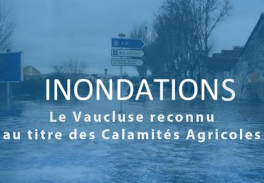 Inondations 2019 : Le Vaucluse reconnu au titre des Calamités Agricoles